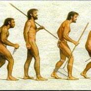 نظریه جدیدی در تکامل انسان