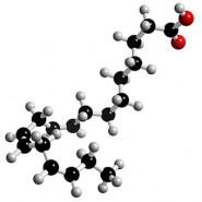 مهم ترین اسیدهای چرب و منابع غذایی آن ها