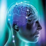 مدلسازی برای فعالیتهای مغز