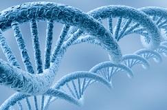 اولین همایش ملی بیوتکنولوژی دانشگاه گلستان