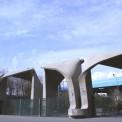 معرفی دانشگاه تهران به عنوان برترین دانشگاه جهان اسلام