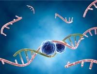 راه اندازی مرکز ثبت سرطان دانشگاه علوم پزشکي مشهد
