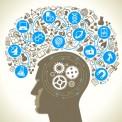 ارائه منابع پژوهش مورد نیاز شما در قالب ورد