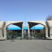 مرکز مشاوره دانشگاه تهران «ممتاز» شد