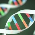 جهش نادر ژنتیکی موثر در پیشرفت MS