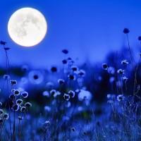 اگر ماه نباشد چه اتفاقی خواهد افتاد؟