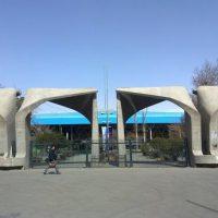 پیادهروی در دانشگاه تهران به مناسبت هفته تربیت بدنی