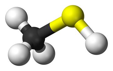 ساختار مولکولی مرکاپتان
