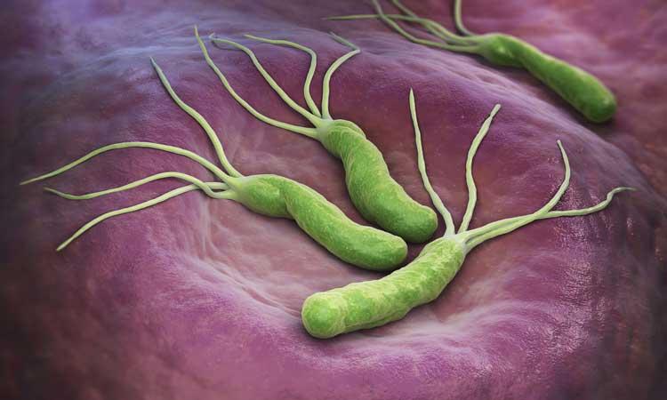 علایم میکروب معده