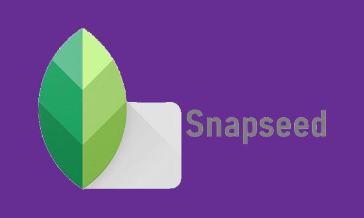 برنامه Snapseed برای تولیدی محتوا در اینستاگرام